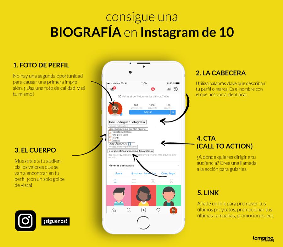 biografia-instagram-infografia
